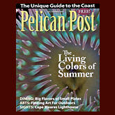 Pelican Post | Summer 2007
